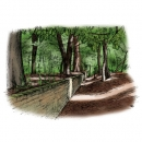 <h5>Illustrations and design for interpretation boards</h5><p>Ha-ha</p>