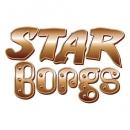 <h5>Star Borgs illustration, branding and design</h5>