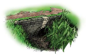 Canal-Feeder