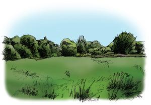 Ickenham-Marsh