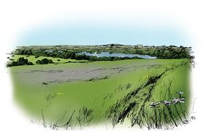 Panoramic-views